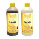 Ferro Groei A+B 1 liter