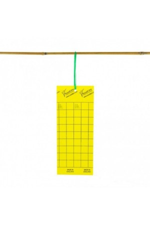 Lijmvallen Geel voor vliegende insecten 10 stuks